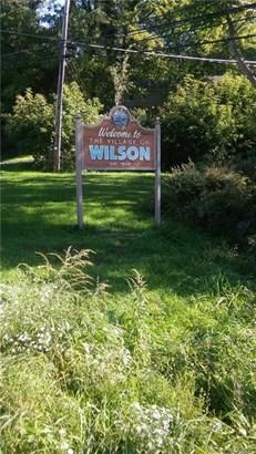 239 Young Street, Wilson, NY - USA (photo 2)