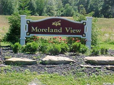 25 Moreland 25, Auburn Township, OH - USA (photo 1)