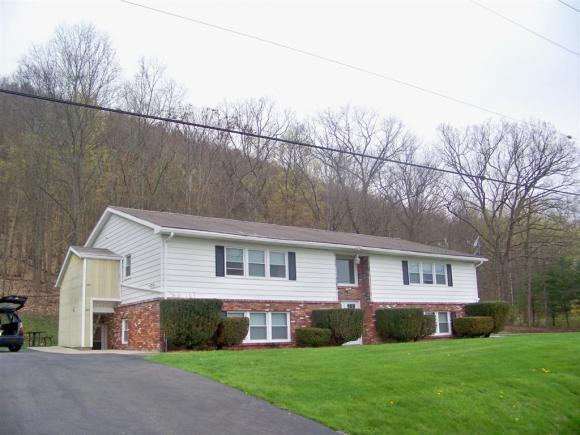 223-229 Parkwood Ave, Elmira, NY - USA (photo 1)