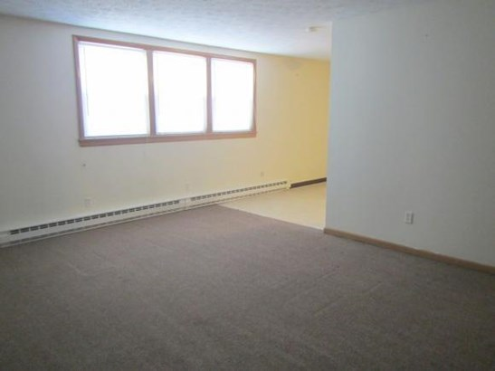 223-229 Parkwood Ave, Elmira, NY - USA (photo 4)