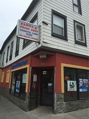 109 Grant Street, Buffalo, NY - USA (photo 1)