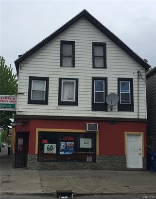 109 Grant Street, Buffalo, NY - USA (photo 3)