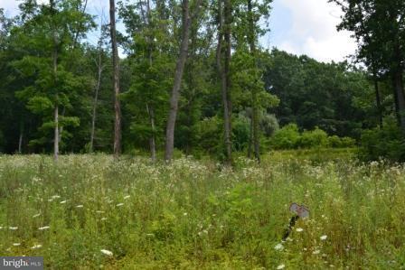 84 Straw Hollow Rd, Harrisburg, PA - USA (photo 2)