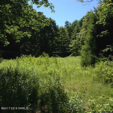 539 Sand Hill Road, Greenfield, NY - USA (photo 1)