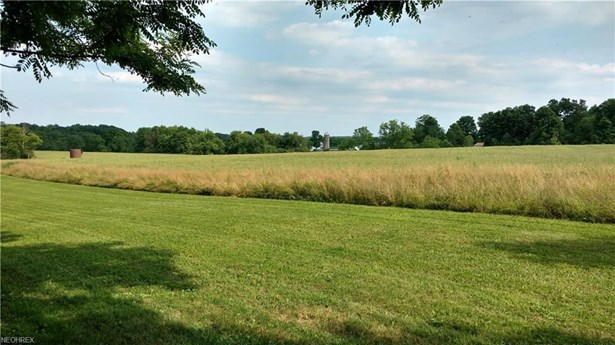 Lot 1 Rolling Meadows Dr, Garrettsville, OH - USA (photo 2)