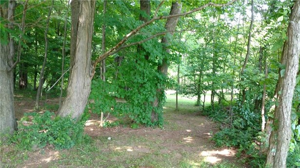 Lot 1 Rolling Meadows Dr, Garrettsville, OH - USA (photo 3)