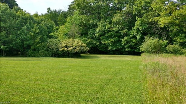 Lot 1 Rolling Meadows Dr, Garrettsville, OH - USA (photo 4)