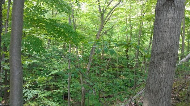 Lot 1 Rolling Meadows Dr, Garrettsville, OH - USA (photo 5)