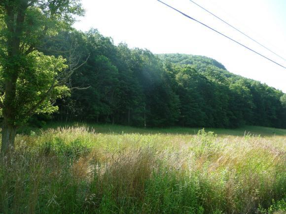 Lot 4 White Church Road, Brooktondale, NY - USA (photo 1)