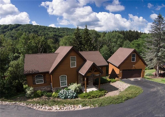 6835 Springs Road, Ellicottville, NY - USA (photo 1)