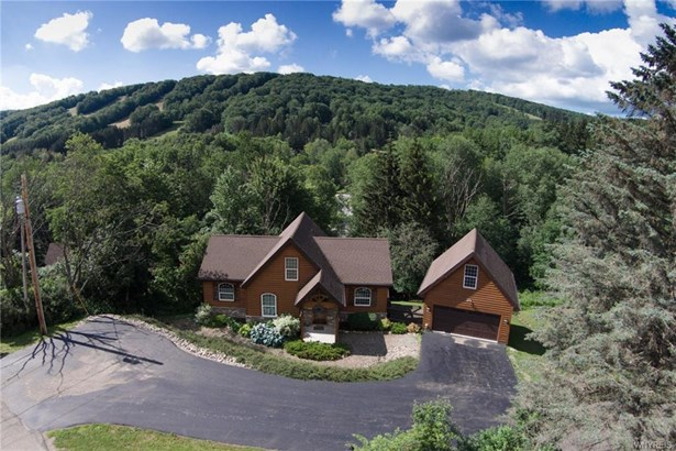 6835 Springs Road, Ellicottville, NY - USA (photo 3)