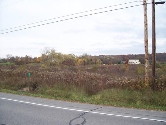 0 Sthwy 256, Dansville, NY - USA (photo 2)