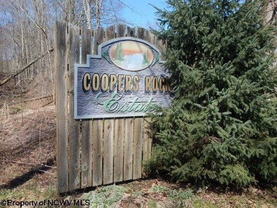 Lot 22 Coopers Rock Estates, Bruceton Mills, WV - USA (photo 5)