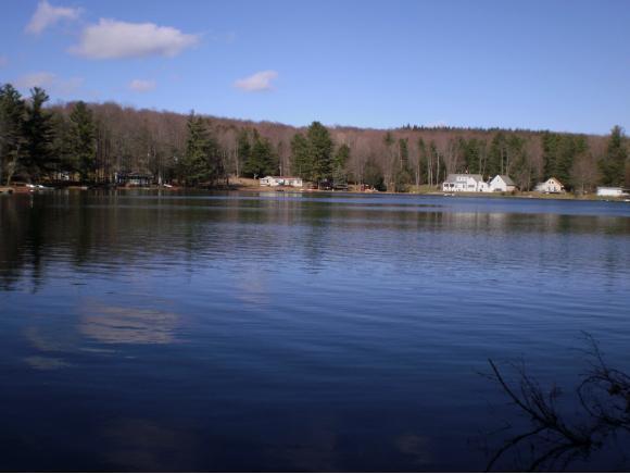 46 Lake Roy Circle, New Milford, PA - USA (photo 3)