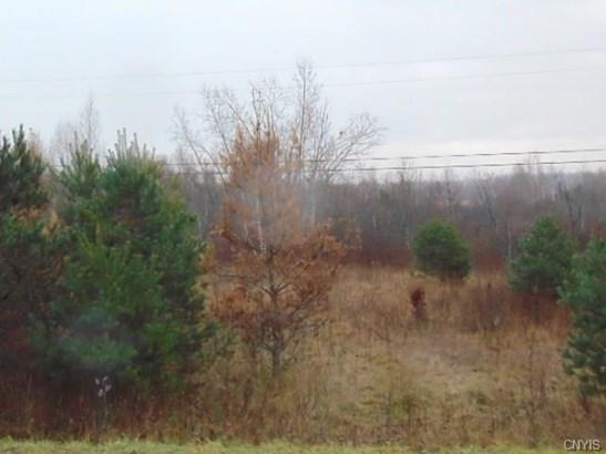 38980 County Route 15, La Fargeville, NY - USA (photo 4)