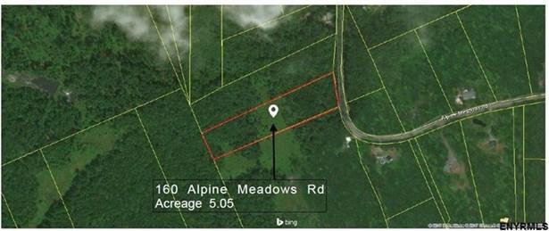 160 Alpine Meadows Rd, Porter Corners, NY - USA (photo 1)