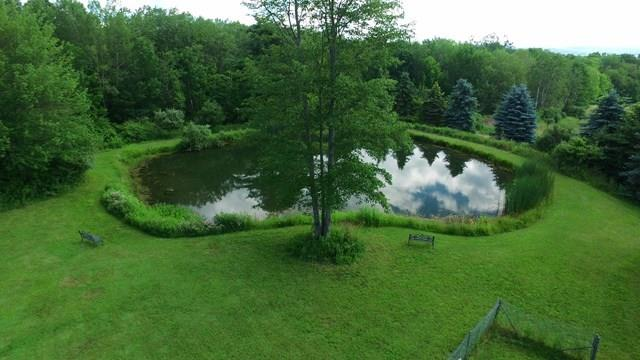 185 Pine Valley Rd., Pine Valley, NY - USA (photo 3)