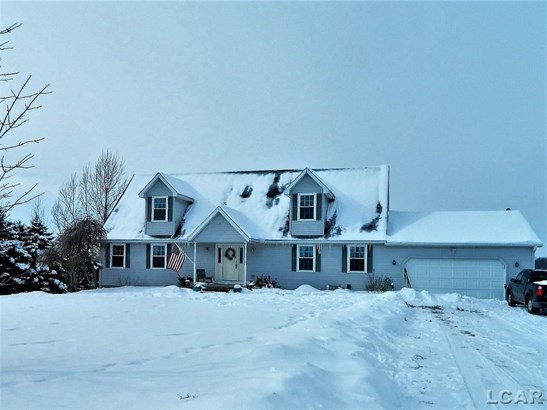 9190 Brooks Hwy, Onsted, MI - USA (photo 1)