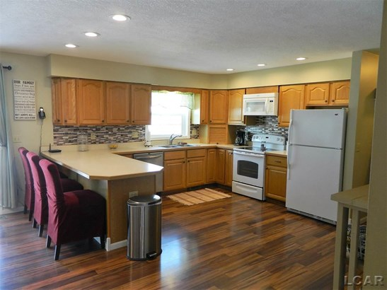 9190 Brooks Hwy, Onsted, MI - USA (photo 3)
