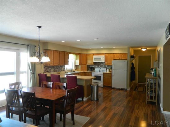 9190 Brooks Hwy, Onsted, MI - USA (photo 4)
