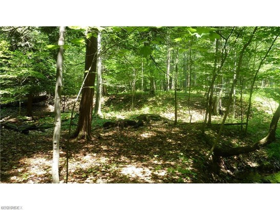 15 Callow (15 Acres) Rd, Painesville, OH - USA (photo 1)