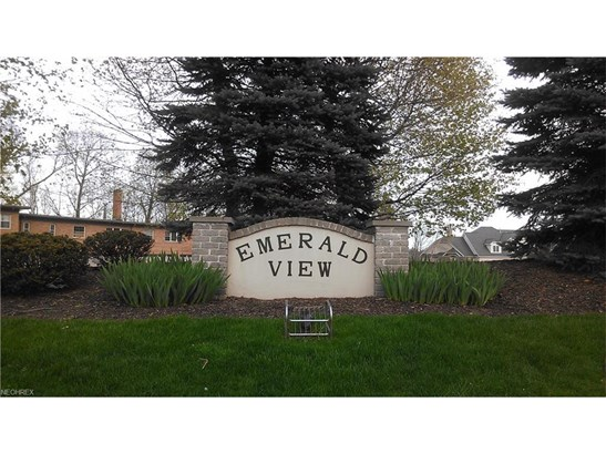 20001 Emerald View, Fairview Park, OH - USA (photo 2)