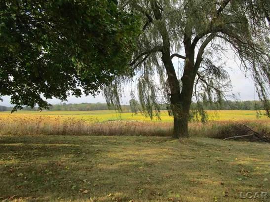 18036 Quaker Road, Hudson, MI - USA (photo 5)