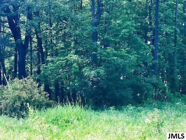 Lot 150 Eaglehurst Dr, Jerome, MI - USA (photo 2)