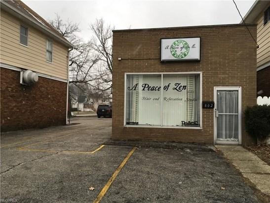 804 E 222nd St, Euclid, OH - USA (photo 5)