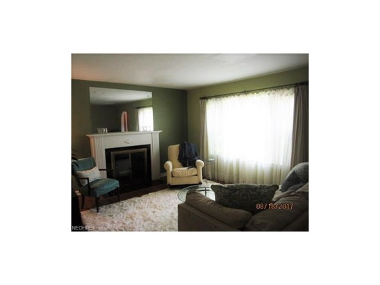 423 Roslyn Ave, Akron, OH - USA (photo 5)