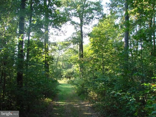 Lot 28a Muddy Creek Forks Rd, Airville, PA - USA (photo 1)