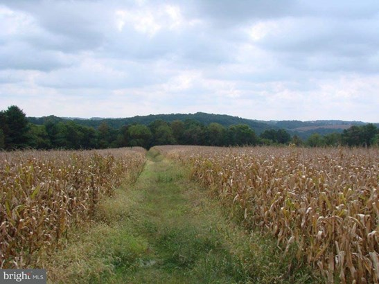 Lot 28a Muddy Creek Forks Rd, Airville, PA - USA (photo 2)
