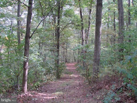 Lot 28a Muddy Creek Forks Rd, Airville, PA - USA (photo 3)