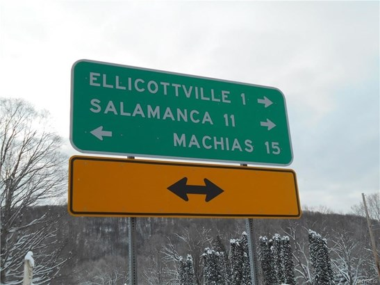 6296 Route 242 East, Ellicottville, NY - USA (photo 3)