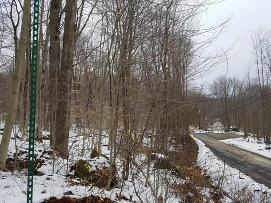 Maple Ln, Wilcox, PA - USA (photo 3)