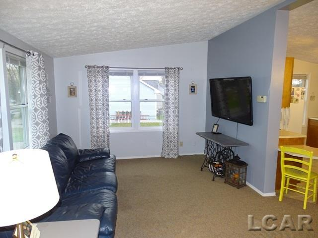 8918 Cork Lane, Onsted, MI - USA (photo 2)