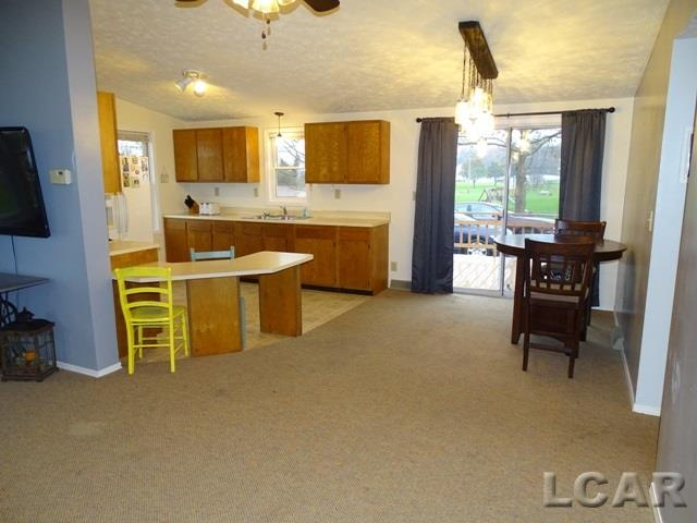 8918 Cork Lane, Onsted, MI - USA (photo 4)