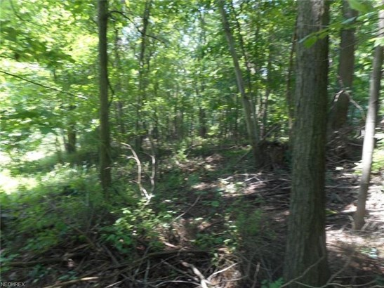1176 Russell Nw Dr, Bolivar, OH - USA (photo 4)