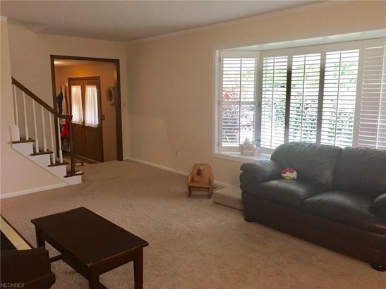 935 Hamilton Ave, Wooster, OH - USA (photo 4)