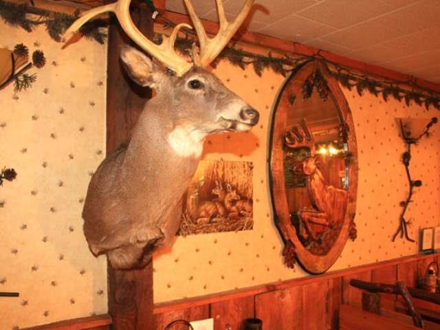 99 Hill Drive, Tidioute, PA - USA (photo 5)
