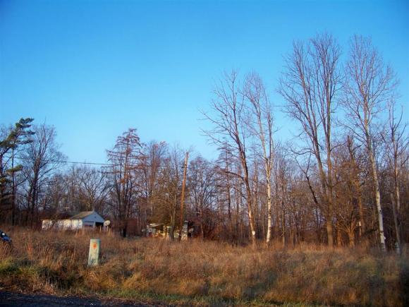 74 Fishkill Road, Newfield, NY - USA (photo 4)