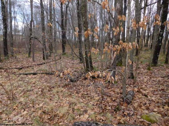 Lot 17 Shady Brook Road, Bruceton Mills, WV - USA (photo 2)