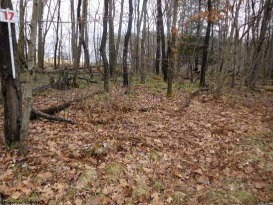 Lot 17 Shady Brook Road, Bruceton Mills, WV - USA (photo 3)