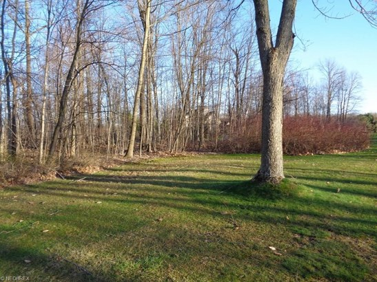 14611 Shire Ct, Novelty, OH - USA (photo 5)