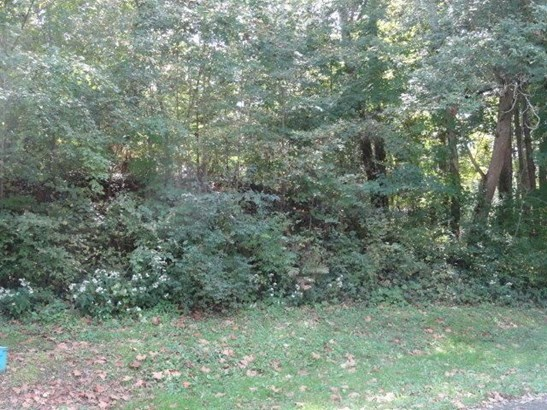 0 Chester Estates Drive Lot #128, Chesterville, OH - USA (photo 2)