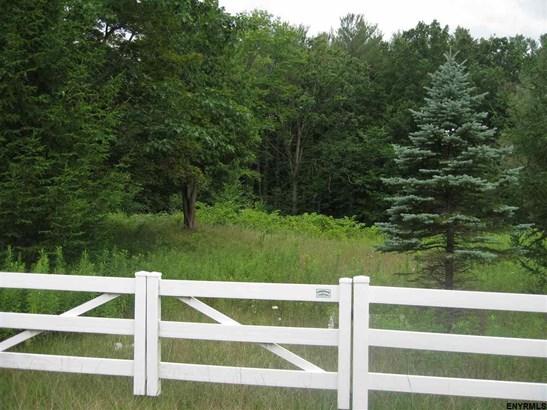 239 Elm Av, Delmar, NY - USA (photo 2)
