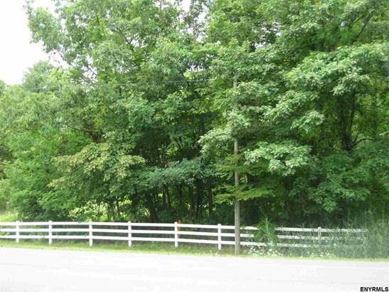 239 Elm Av, Delmar, NY - USA (photo 3)