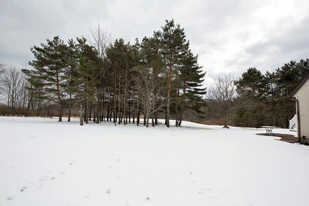186 Halderman Hollow, Elmira, NY - USA (photo 5)