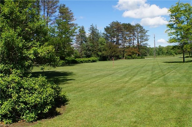 11426 Chillicothe Rd, Chesterland, OH - USA (photo 5)