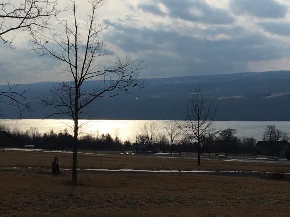 3759 Lake Ridge, Burdett, NY - USA (photo 1)